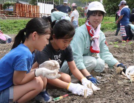 野菜の植え付けに汗、児童ら食農学ぶ