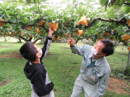 食農教育を通じて農業の大切さを実感